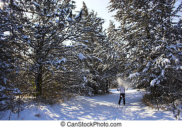 Cross-country winter skiing in Nebraska forest