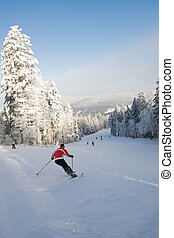 ski, reiter