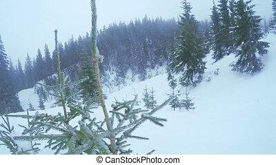 Ski resort in mountains