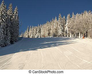 ski run / ski piste