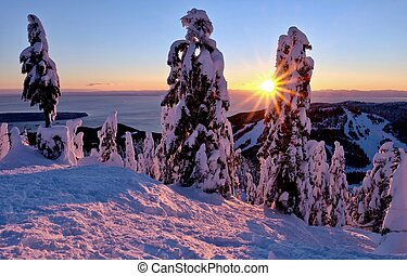 Ski runs on Cypress Mountain at sunset. - Cypress Mountain...