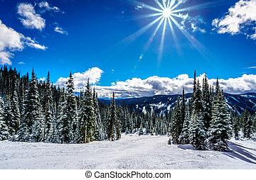 Ski Slope in the High Alpine under bright Sun at Sun Peaks...