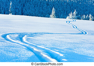 Ski trace on snow surface and winter mountain fir forest behind.