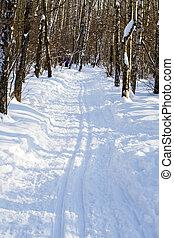ski track in sunny winter park