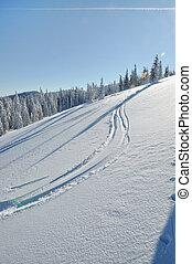 Ski track in the snow