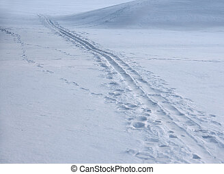 Ski track partly covered in snow after a storm