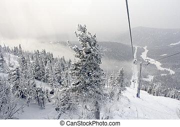 ski trail,