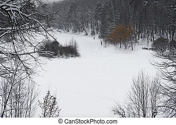 Ski trail.