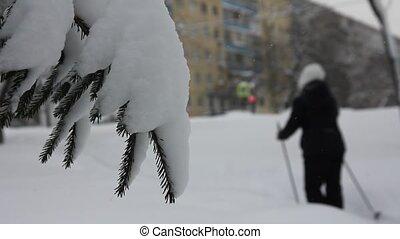 Ski walk in the City Park
