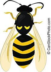 skica, vosa, wasp., osamocený, včela, white.