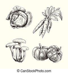 skicc, állhatatos, ábra, kéz, ősz, húzott, betakarít