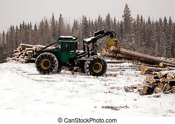 Skidder hauling spruce tree
