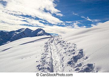 skier, hardloop wedstrijd, in, de, sneeuw