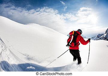 skier, mannelijke , sneeuw, skiing:, poeder
