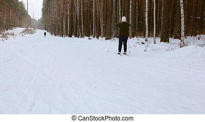 Skier moving along ski-track through the winter pine forest
