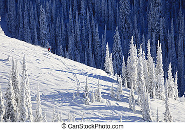 A skier is traveling down a snow covered mountainside already lined with ski tracks. Horizontal shot.