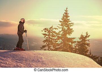 Skier - Male skier