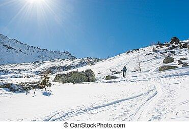 Skier walking on a trail.