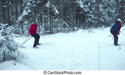 Skiers glide quickly on the track in the forest - Two skiers...