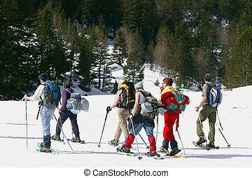 skiers, groep
