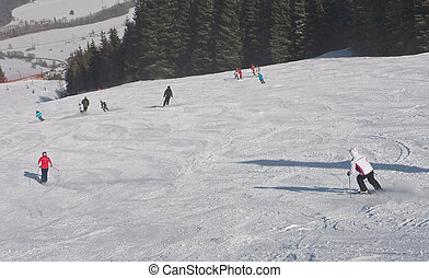 Skiers is skiing at a ski resort