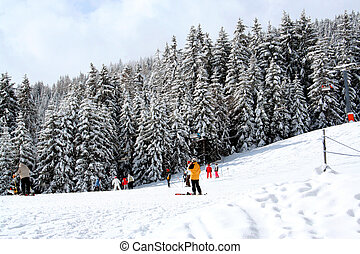 Scenic view of skiers on snowy mountainside with forest in background, Swiss Alps.