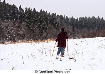 Skiers on the edge of the forest
