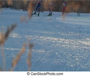 Skiers racing - People racing. Cross-country.