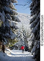 skiing:, 若者, スキー, クロスカントリー