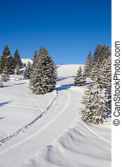 Skiing in alps - Slope on the skiing resort Flumserberg....