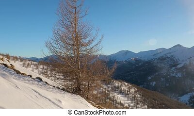 Skiing resort landscape, sunny weather - Using ski lift,...