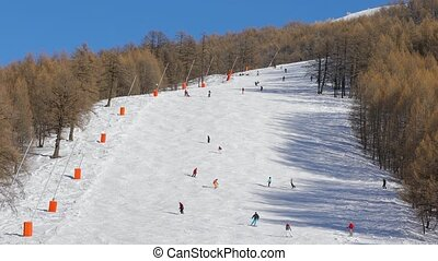 Skiing slopes with skiers - Skiing slope with many skiers