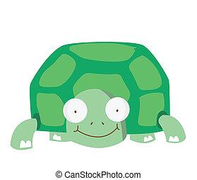 skildpadde, morsom