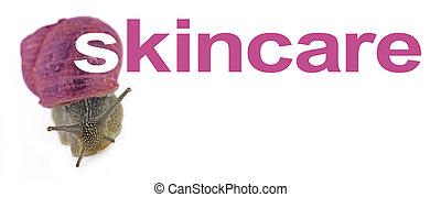 skincare, 粘着物, かたつむり