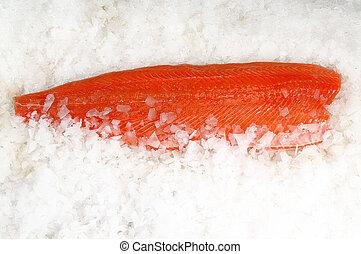 Skinless salmon fillet on ice