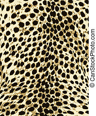 skinn, mode, tryck, leopard, djur