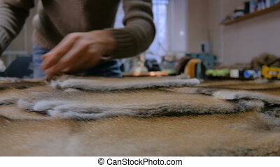 Skinner working with mink fur skin - Professional male...