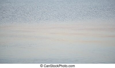 Skipping stones on water surface