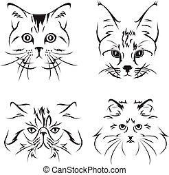skiss, förtjusande, katt