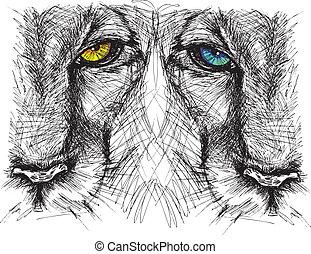 skiss, hand, se, lejon, kamera, oavgjord, fast beslutsamt