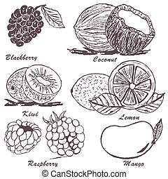skitse, frugt, 3