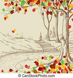 skitse, træ, blade, park, efterår, klar, fald