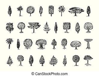 skizze, baum, abbildung, hand, vektor, hintergrund, gezeichnet, weißes
