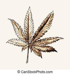 skizze, blatt, marihuana