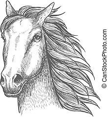 skizze, rennpferd, hengst, pferd, thema, rennsport