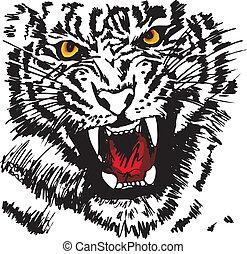 skizze, vektor, weißes, abbildung, tiger.