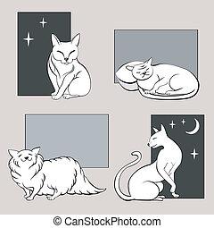skizzen, lustiges, katzen, satz, zwei
