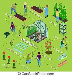 skleník, isometric, vývojový diagram