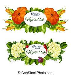 sklep spożywczy, wektor, warzywa, wyroby, kasownik