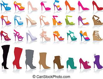 sko, vektor, sæt, farverig